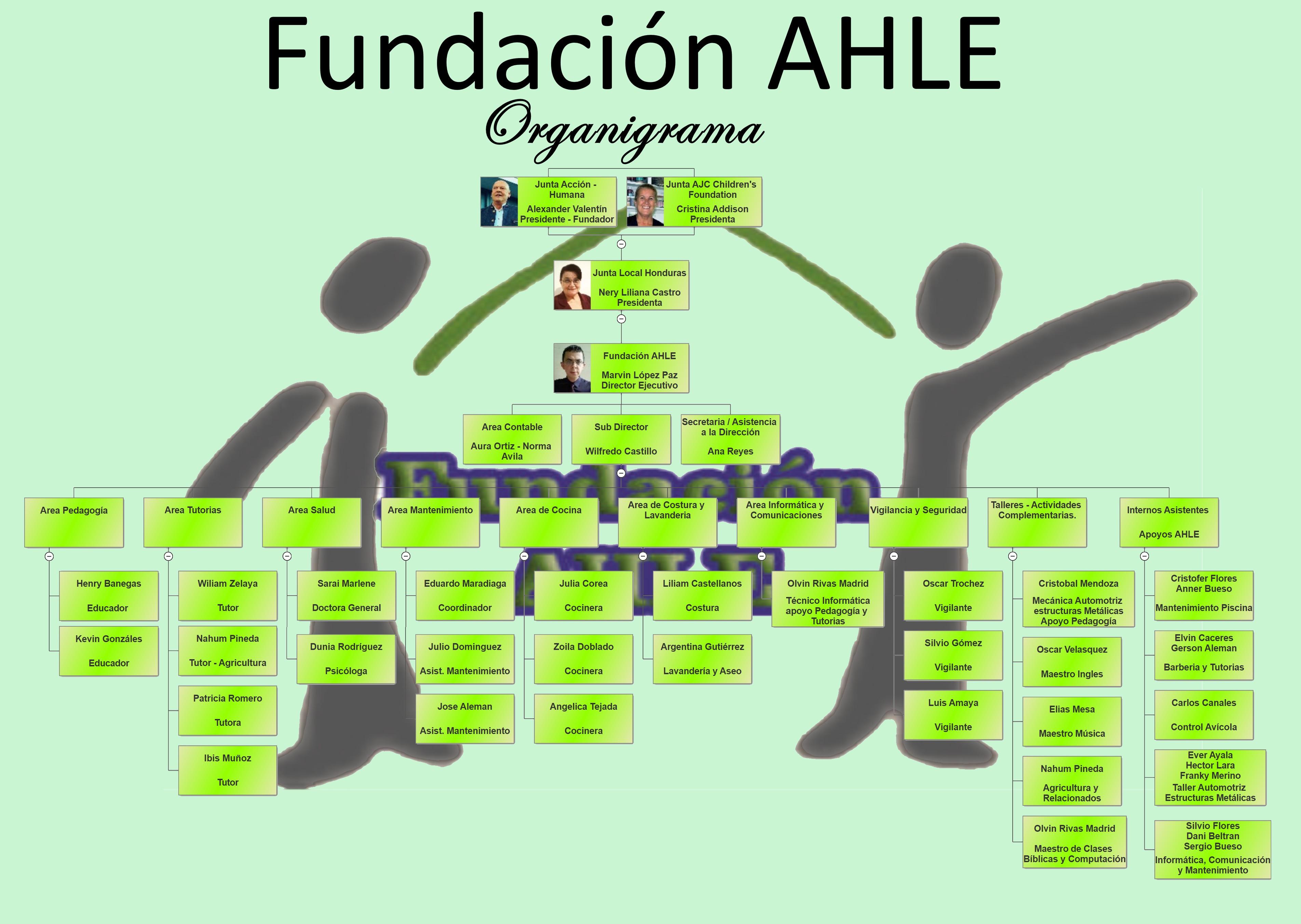 Organigramm AHLE