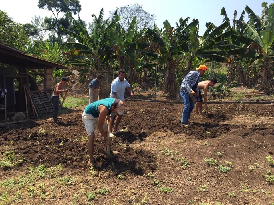 Landwirtschaftsprogramm